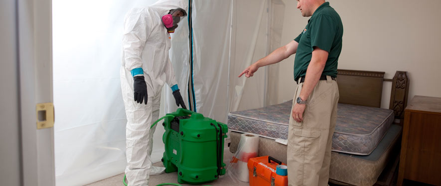 Lexington Park, MD mold removal process